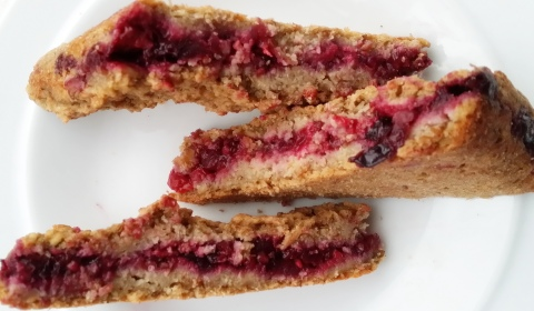 Berry and Currents Oats bars